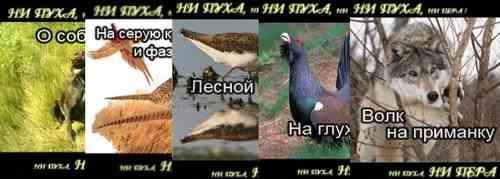 """Все выпуски телепередачи """"Ни пуха, ни пера"""""""