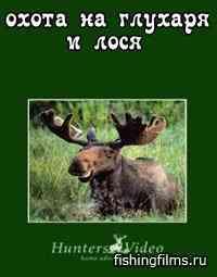 Hunters Video. Шведские каникулы: охота на глухаря и лося