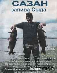 Абаканская рыбалка. Сазан залива Сыда