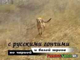 С русскими гончими по черной и белой тропе
