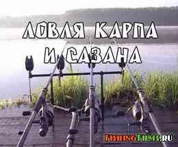 Ловить судака на яйца - Про рыбалку