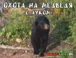 Охота на медведя барибала с луком
