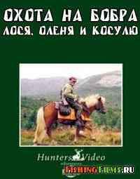 Охота на бобра, лося, оленя и косулю