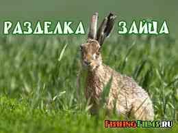 Пособие по разделке зайца