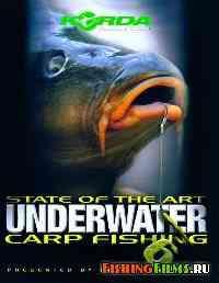 Подводная ловля карпа. Часть 6 / State of the art underwater carp fishing. Part 6