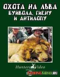 Охота на льва, буйвола, гиену и антилопу