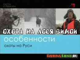 Охота на лося зимой в Вологодской области