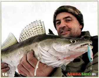 Зимняя ловля судака на Куйбышевском водохранилище