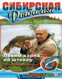 Сибирская рыбалка. Ловим карпа на штекер (Выпуск 10)