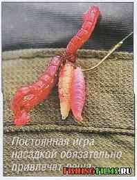 рыболовное сито для прикормки в новосибирске