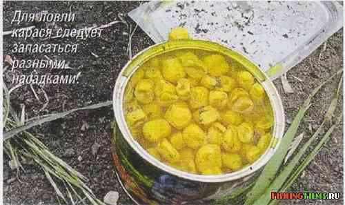 прикормка для весеннего сазана