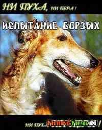 Испытание борзых собак