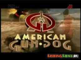 Охота с собакой по-американски