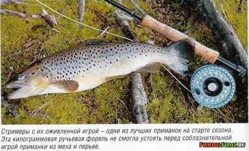 способы ловли форели в горных реках