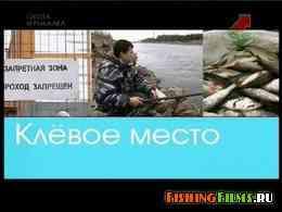 Ленинградская область. Город Сосновый Бор