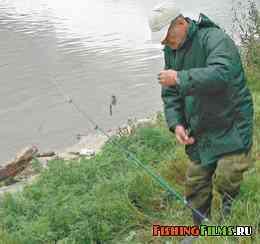 ловля на ходовую донку на малых реках