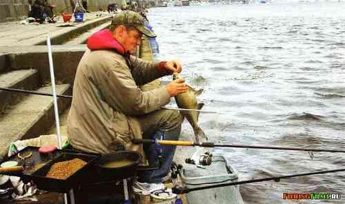 прикормка для фидера купить в москве