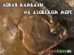 Ловля камбалы на Азовском море
