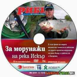 Ловля рыбца на поплавочную удочку на реке Искър